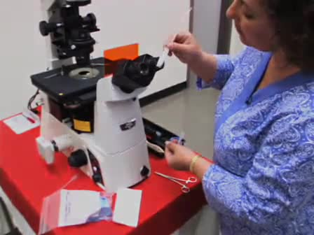 Korrekt vård och rengöring av mikroskopet