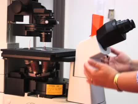 Viktigaste komponenterna i ljusmikroskop