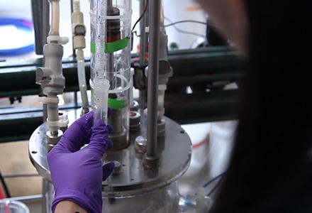 Cristallisation de l'acide salicylique par une Modification chimique