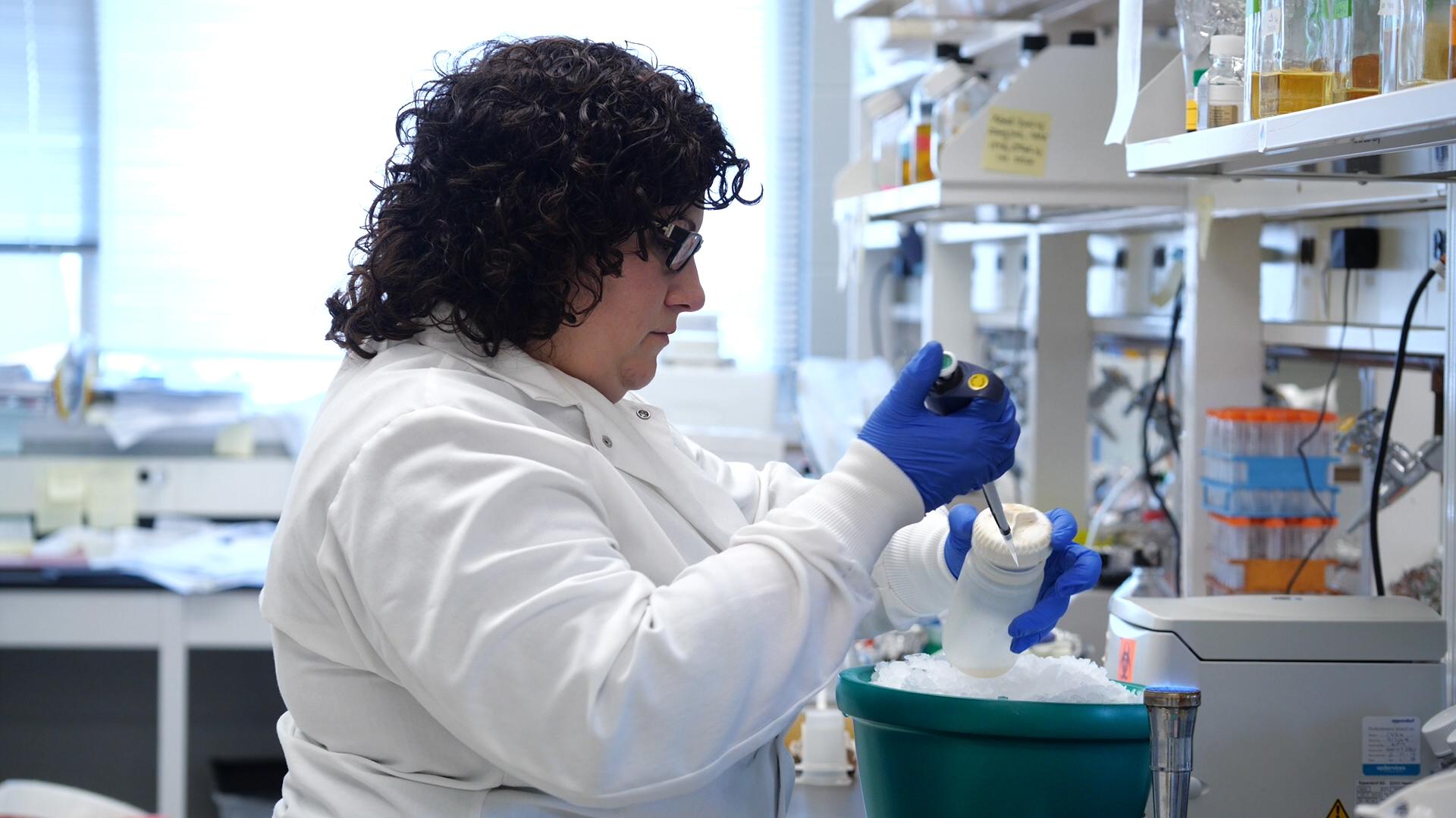 Transformation des cellules <em>E. coli</em> à l'aide d'une procédure adaptée de chlorure de calcium