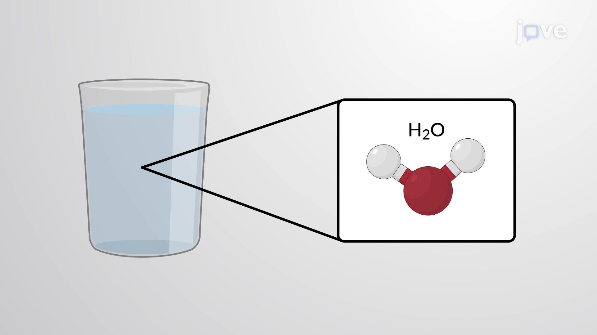 분자와 화합물