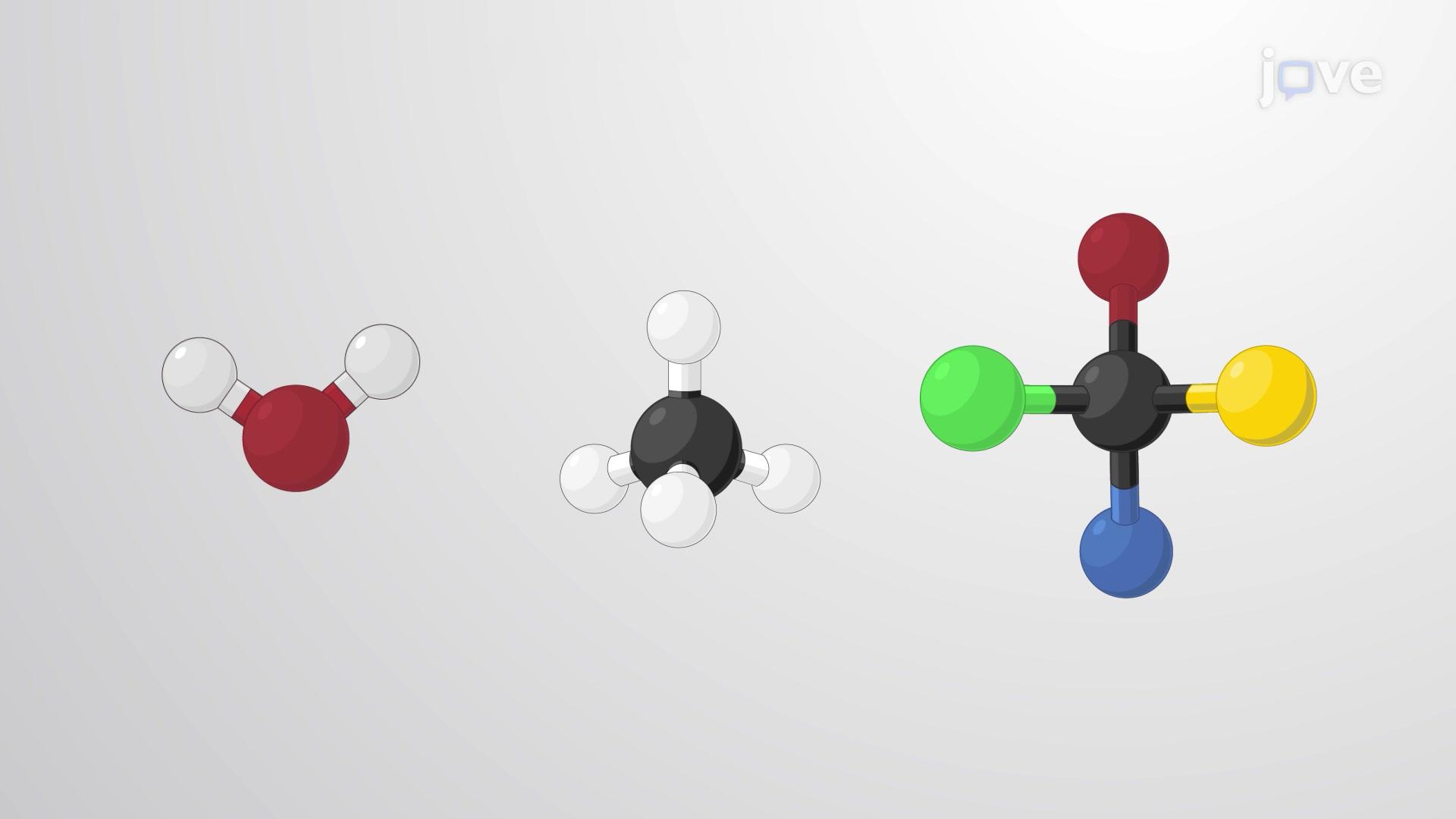 분자 모양