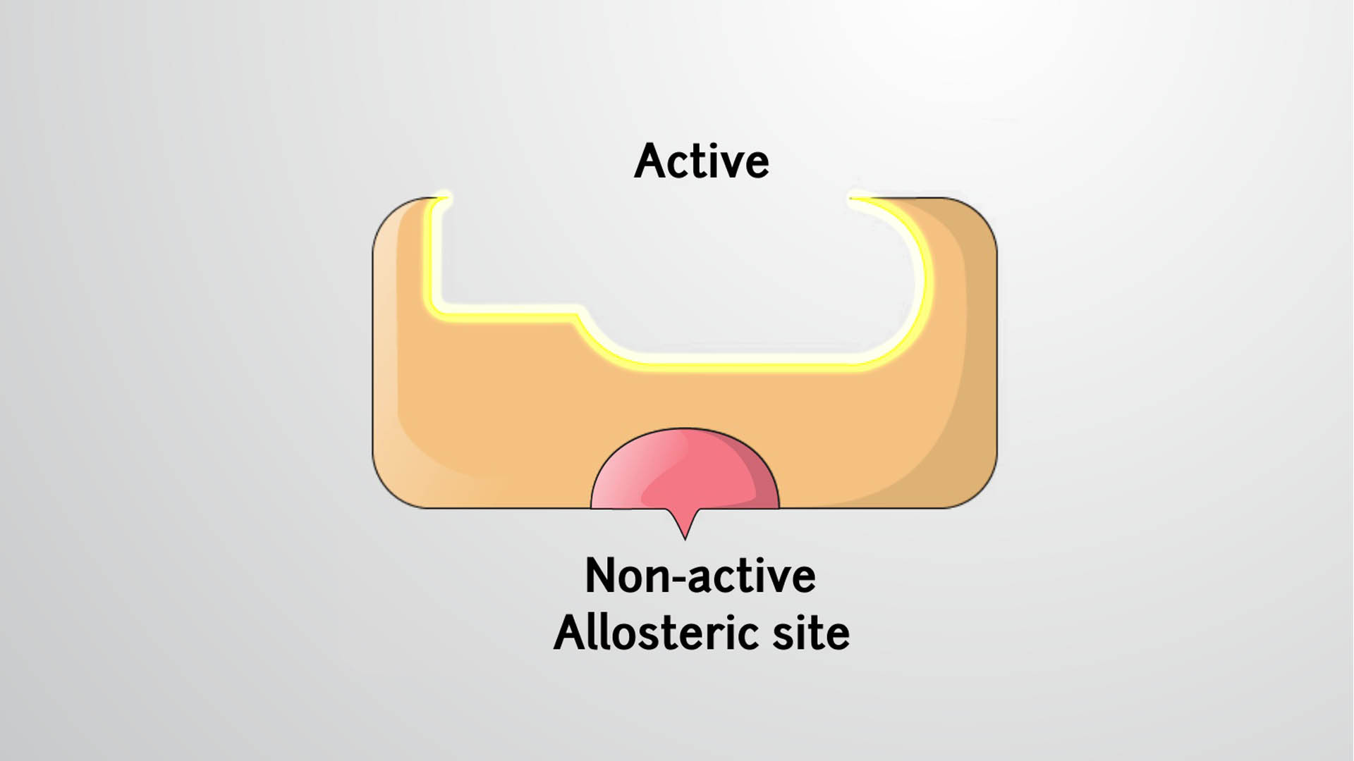 Allosteric Regulation