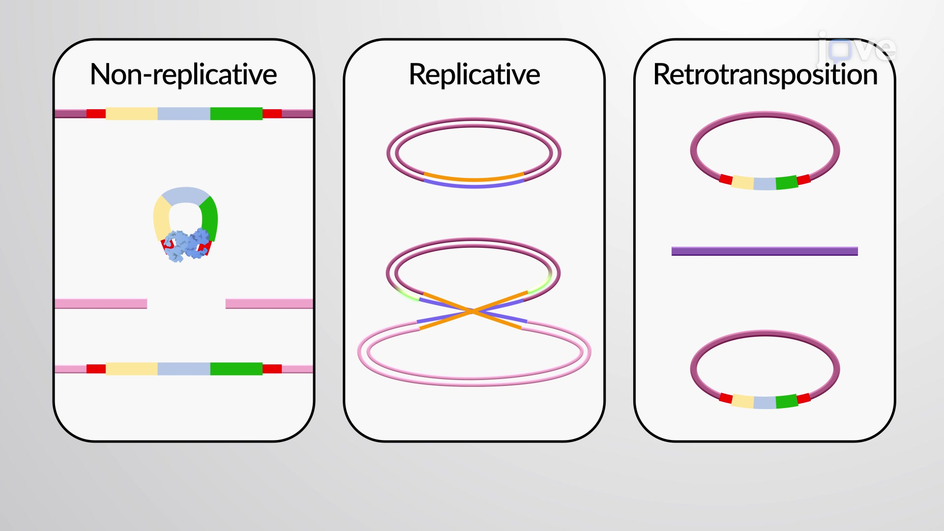 Overview of Transposition and Recombination