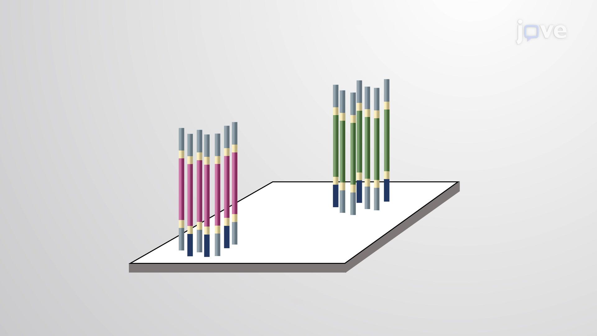 Genome Sequencing II - Next-Gen Methods
