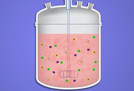 Überblick über die Bioverfahrenstechnik