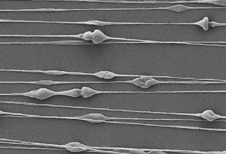 Elektrospinnen von Biomaterialien aus Seide