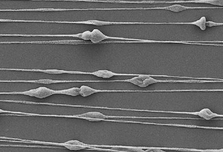 Electrospinning of Silk Biomaterials
