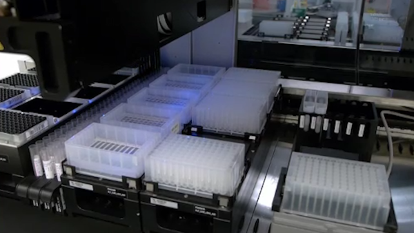 High-throughput, Automated Extraction of DNA and RNA from Clinical Samples using TruTip Technology on Common Liquid Handling Robots