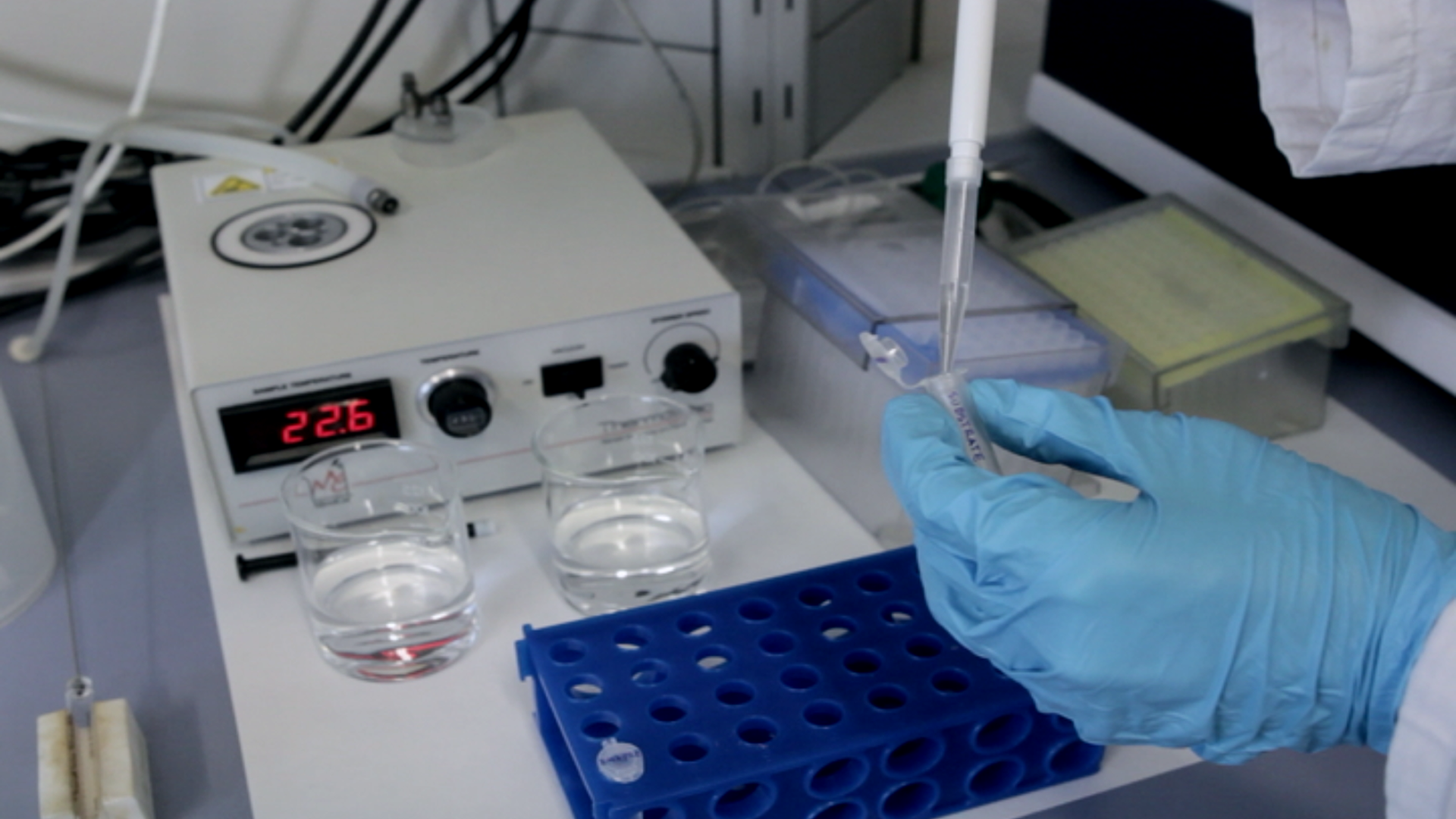 Hot Biological Catalysis: Isothermal Titration Calorimetry to Characterize Enzymatic Reactions