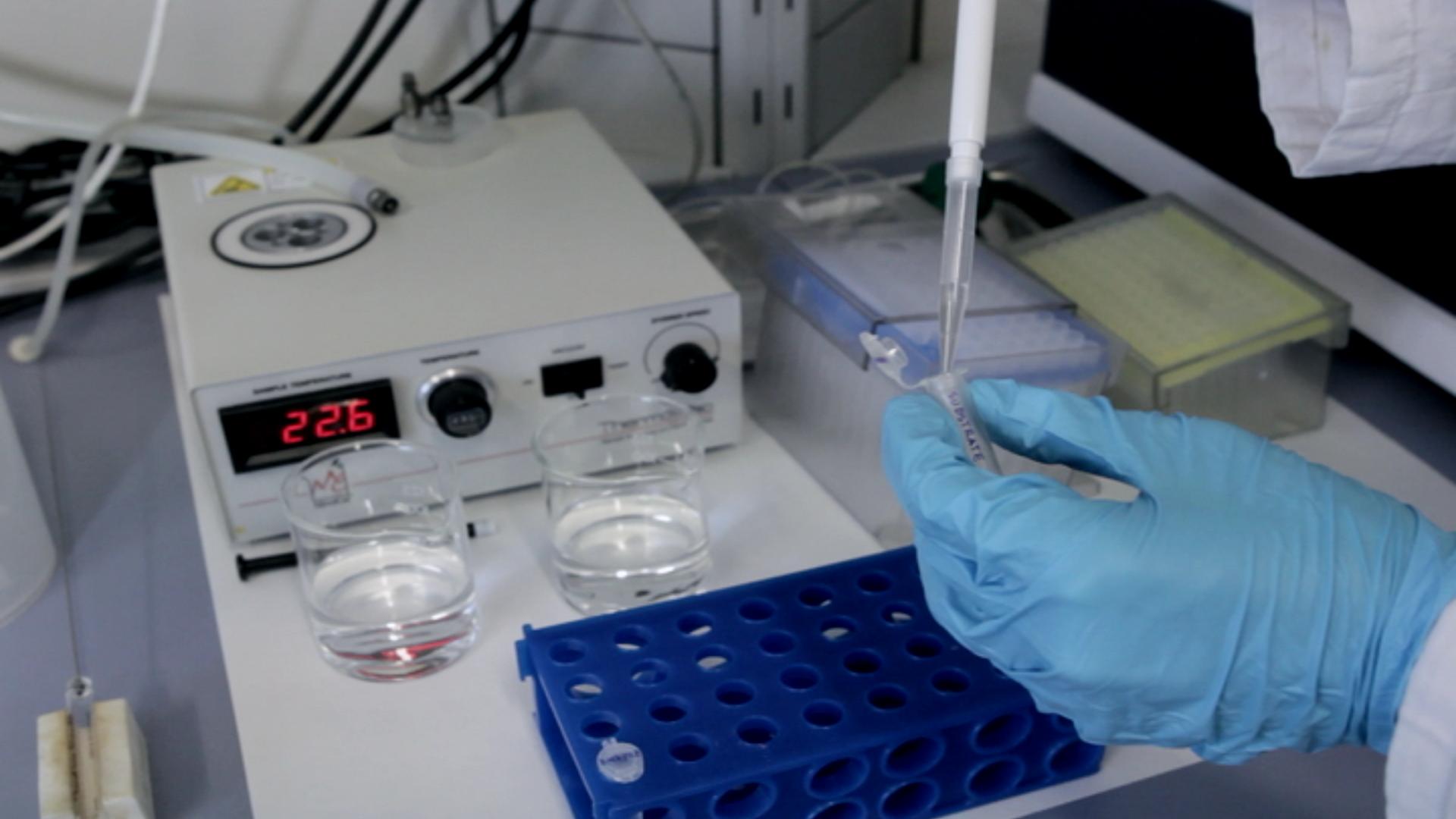 Sıcak Biyolojik kataliz: İzotermal Titrasyon Kalorimetre enzimatik reaksiyonların Characterize