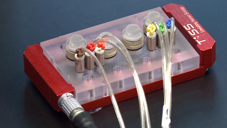 멀티 장기 칩 - 장기 멀티 조직 공 배양을위한 미세 유체 플랫폼