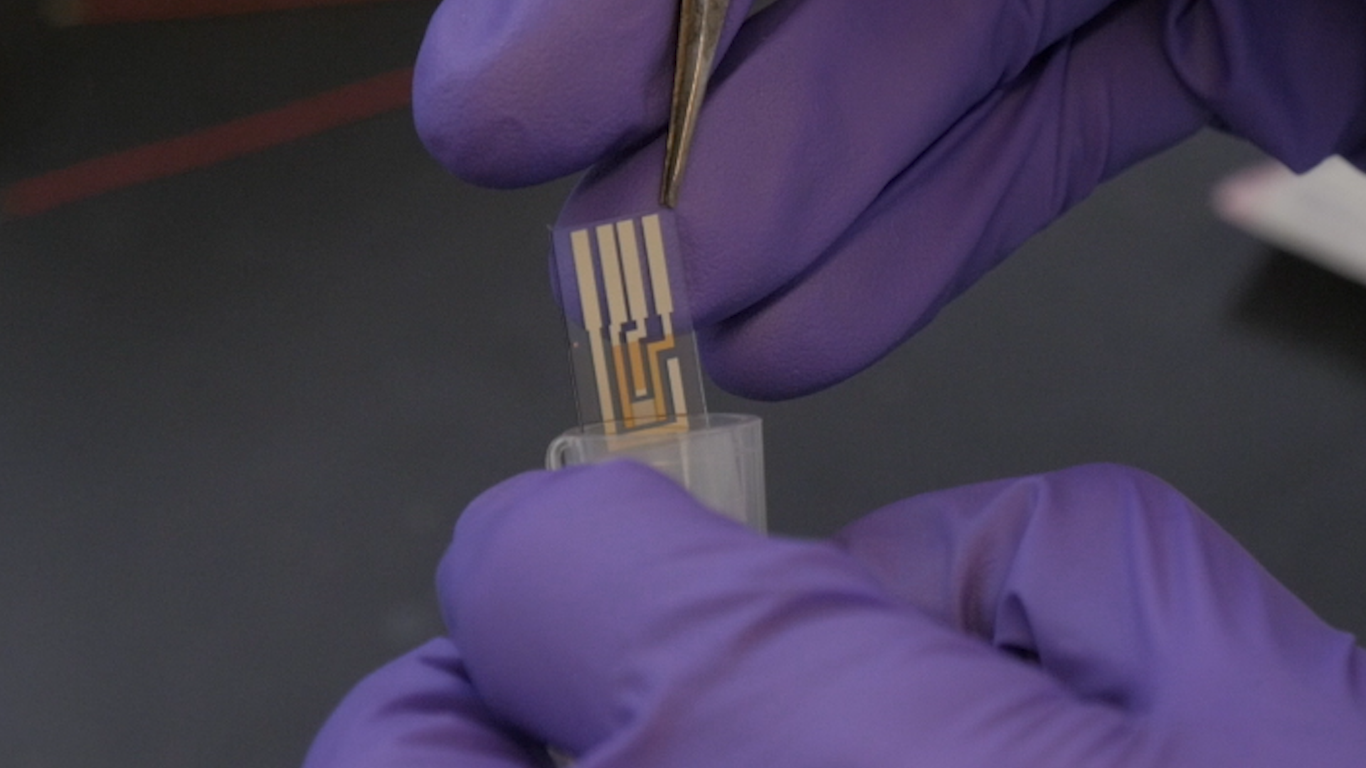 Characterizing Electron Transport through Living Biofilms