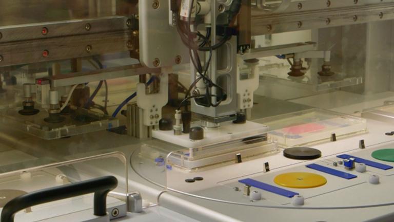 온도에 민감한 치명적인 돌연변이의 높은 처리량 로봇 보조 절연에<em&gt; 클라 미도 모나스의 reinhardtii에서</em