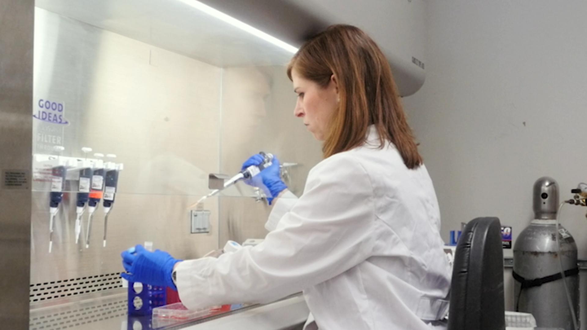 技术诱导和量化细胞衰老