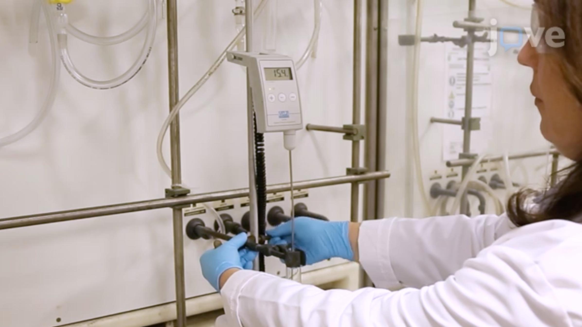 من جزيئات المواد: هندسة البلورات السائلة الأيونية الجديدة من خلال الربط هالوجين