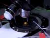 In vivo intracerebrale Stereotaxic injecties voor Optogenetische stimulatie van lange-afstand ingangen in muis hersenen segmenten
